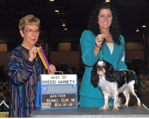 A nice win under judge Marjorie Underwood. First in bred by, best of winners and breed.